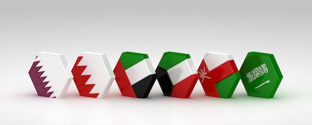 GCC flags (1)